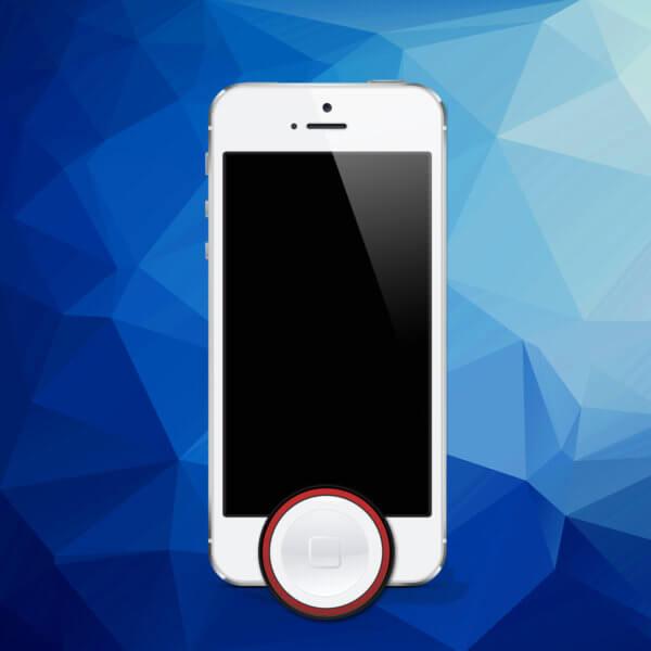 iPhone 5c Homebutton Austausch